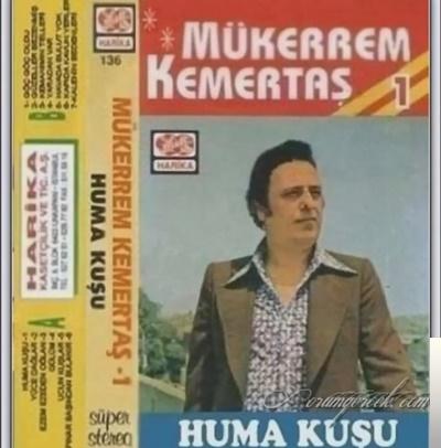 feat Arif Sağ-Yeşil Kurbağalar Öter Göllerde