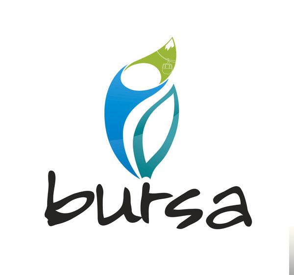 Bursa-Arabam Taşa Geldi